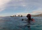 aqua divers club (Αντιγραφή)