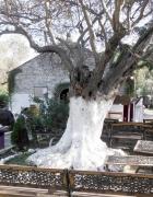 Agios Athanasios Kouvara